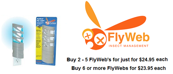 fly-web-home-banner1.png